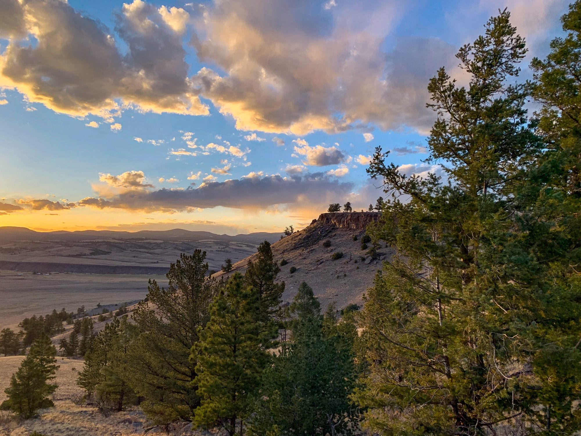rio grande national forest camping photo