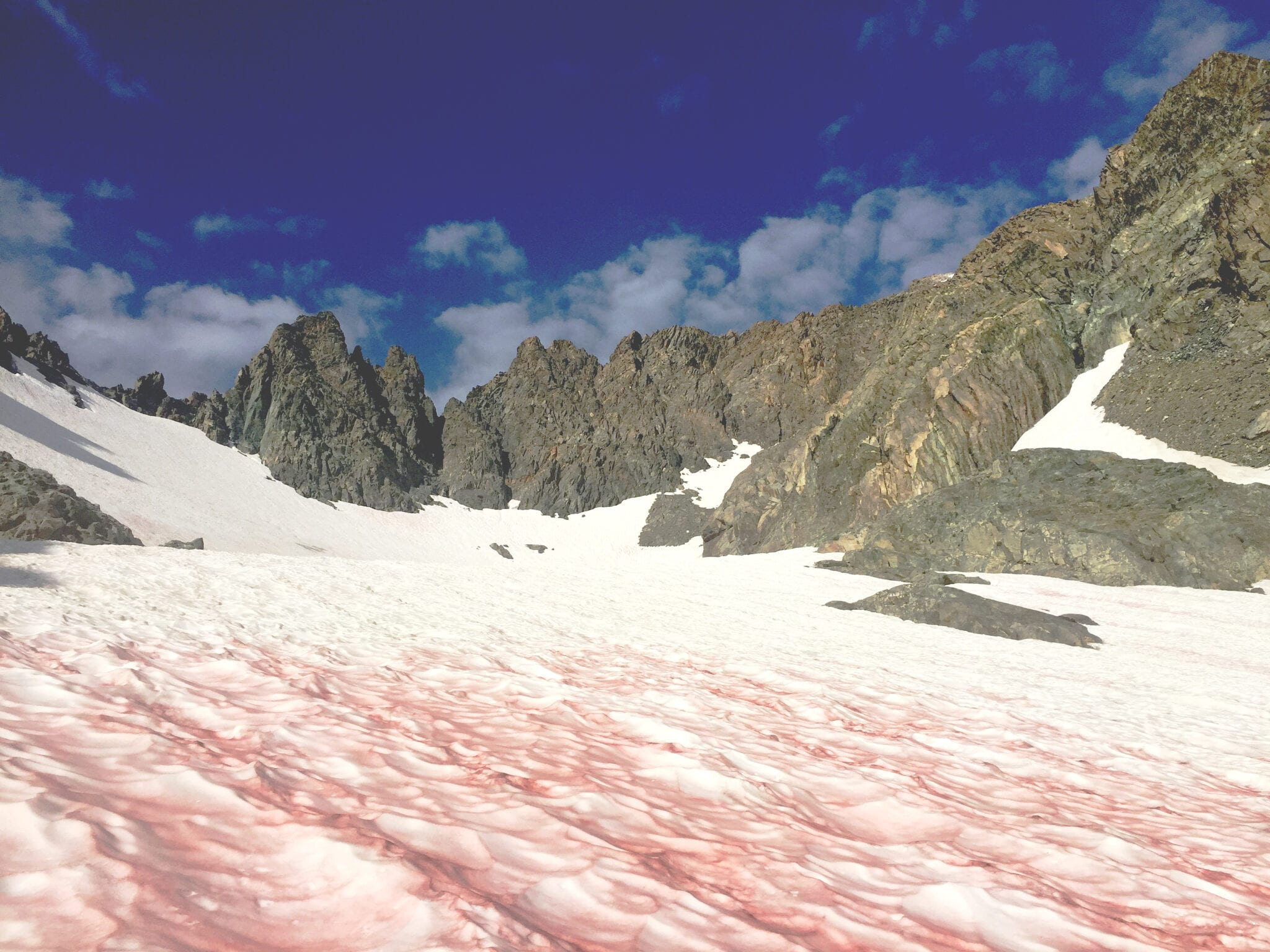 What causes watermelon snow 2